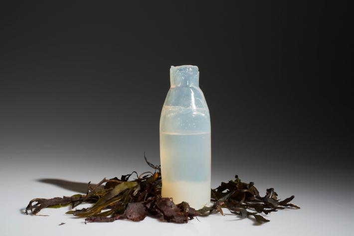 3058190-inline-i-1-you-can-eat-this-algae-based-water-bottle-when-youre-done-with-your-drink.jpg